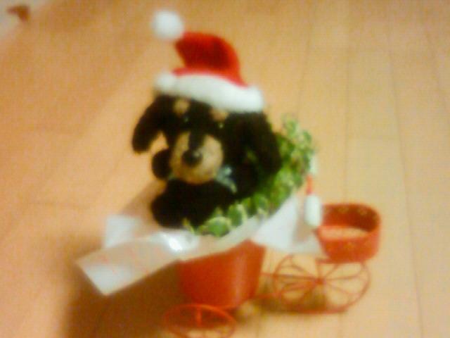 ★メリー・クリスマス★ from Vermont_b0148714_185919.jpg