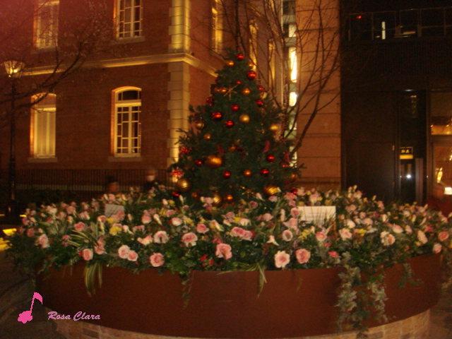 Merry Christmas_f0230127_0133813.jpg