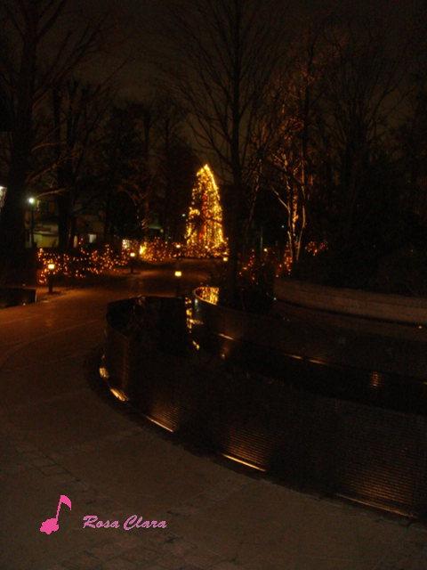 Merry Christmas_f0230127_0403376.jpg