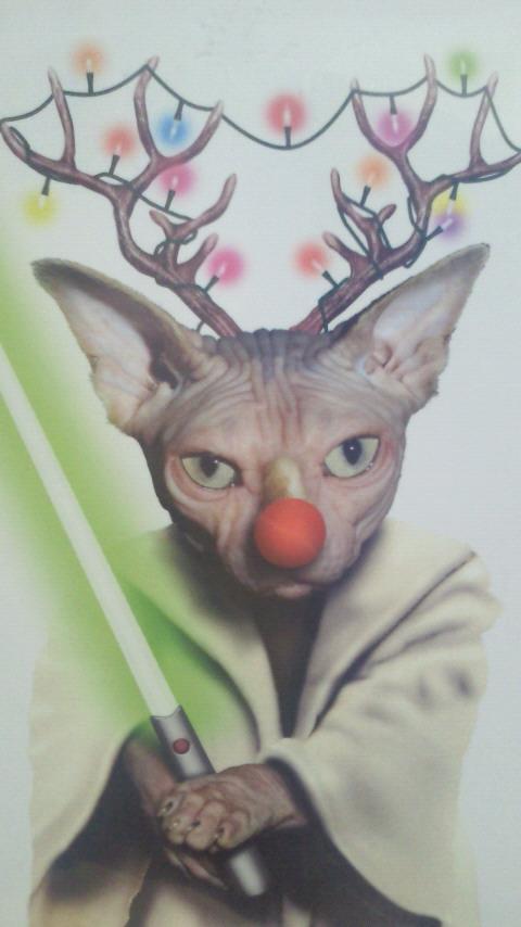 今日はクリスマスでしたね_c0151934_18255757.jpg