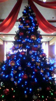メリークリスマス!!_a0055835_1648265.jpg