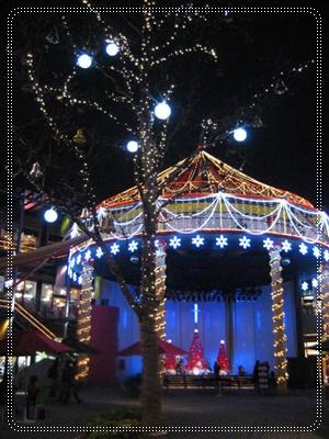 クリスマス、、、去って行きました。_c0049950_19374721.jpg