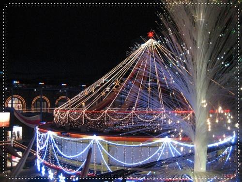 クリスマス、、、去って行きました。_c0049950_23142048.jpg