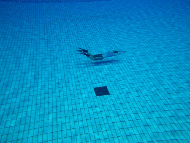 泳ぎ納め。_b0075059_2355228.jpg