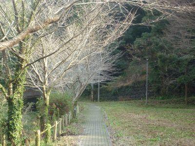 穂掛神社 にぎはやひの降臨した笠置山の麓 美しい渓流に聖地はあった_c0222861_18412580.jpg