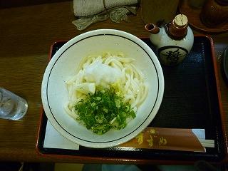 讃岐麺房 すずめ / うどん_e0209787_15582377.jpg