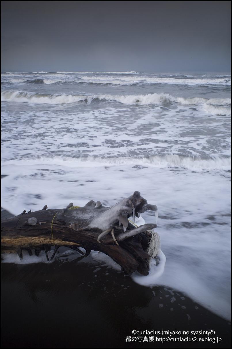 北海の龍2_f0042194_21423831.jpg