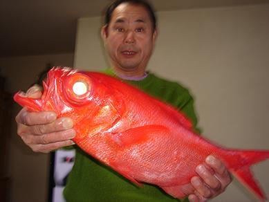 ★赤い鯛だぁー★_e0147297_10583714.jpg