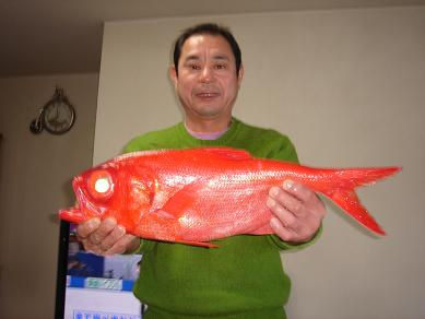 ★赤い鯛だぁー★_e0147297_1105118.jpg