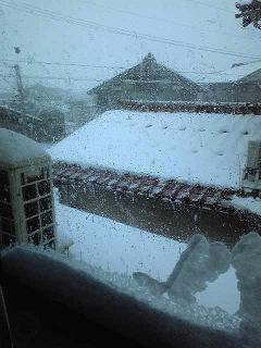 雪。。。インク切れ_e0202518_20465578.jpg
