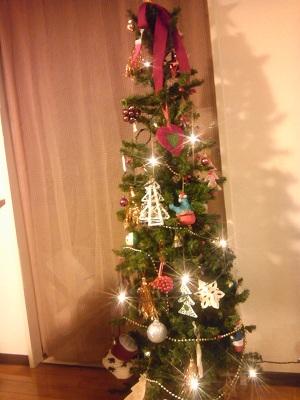 メリークリスマスでした!_d0123425_1373545.jpg
