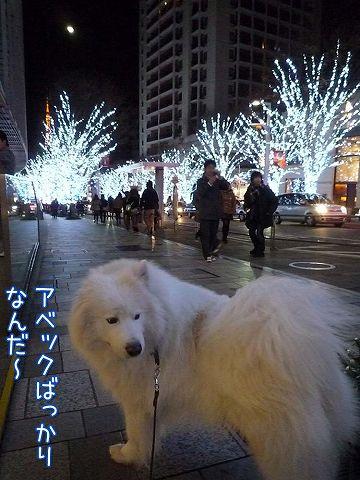 偶然クリスマス♪_c0062832_1832796.jpg