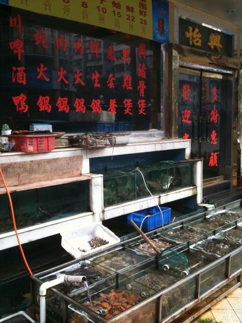 街の海鮮料理店_d0166534_19495440.jpg