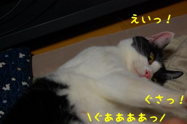 c0181639_044767.jpg