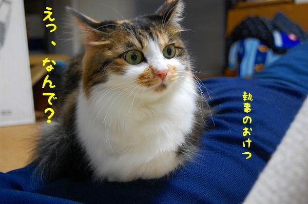 c0181639_051295.jpg