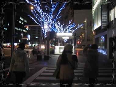 クリスマス、、、去って行きました。_c0049950_0202143.jpg