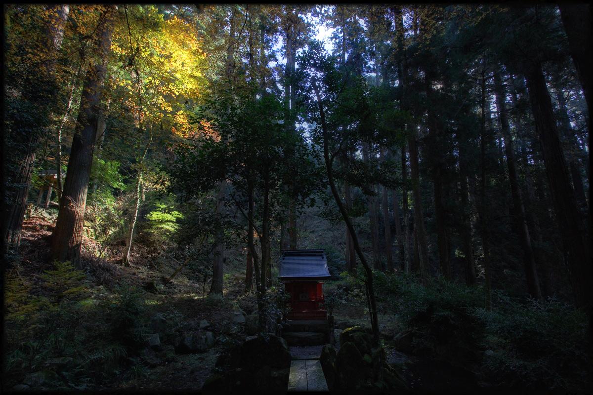 紅葉 2010 <百済寺> 3_f0021869_0393434.jpg