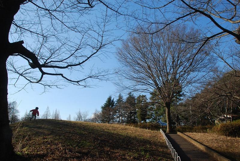 冬の大崎公園他_c0187781_2231197.jpg