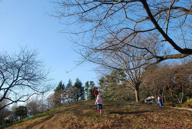 冬の大崎公園他_c0187781_223541.jpg