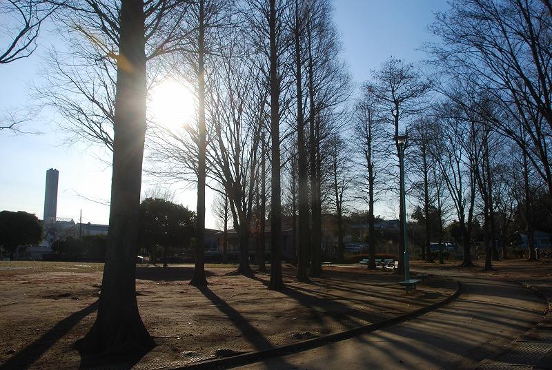 冬の大崎公園他_c0187781_2255870.jpg