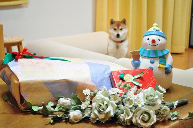 プレゼント貰っちゃった!_a0126590_8593164.jpg