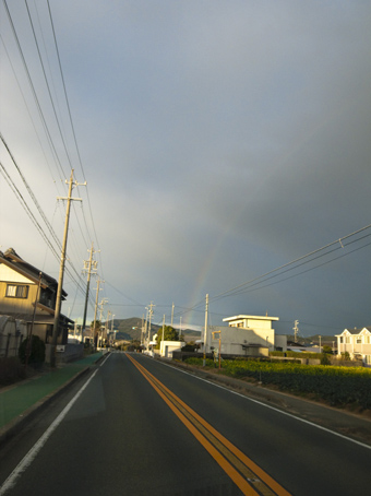 Wの『虹』_b0206197_17145371.jpg