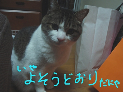 a0039600_03091.jpg