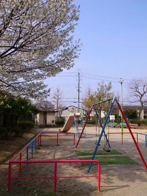 玉岡児童公園ものがたり前篇 桜が咲き、映画がまちにやって来た_c0069903_1195978.jpg