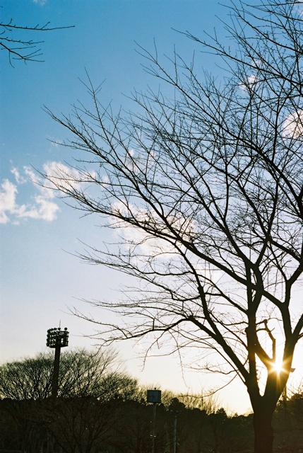 冬の陽。_c0217406_18154344.jpg