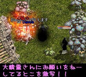 f0072010_019166.jpg