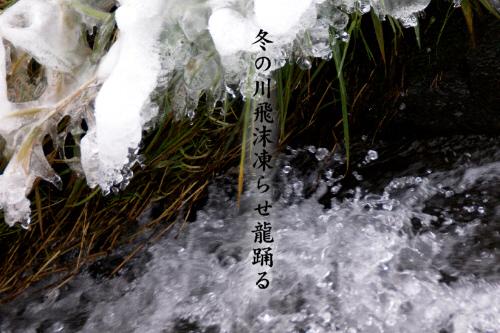 冬の川_e0099713_2134530.jpg