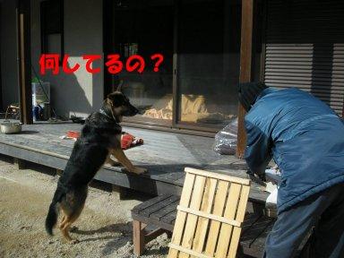 b0113663_8511276.jpg