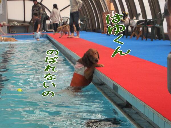 f0109418_001853.jpg