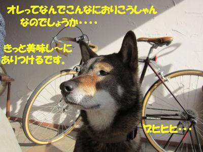 f0143123_19104863.jpg