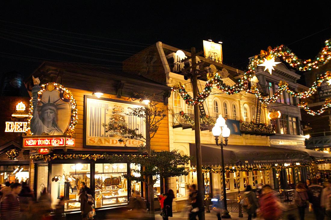 TokyoDisneySea ChristmasWishes2010~ディズニー・シーの素敵なショーと魅惑的な夜~_c0223825_91555.jpg
