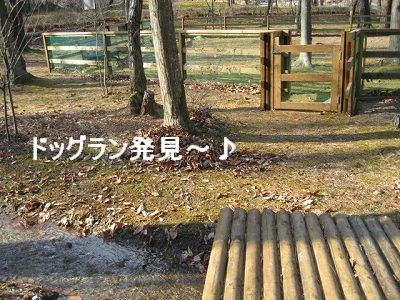 d0033151_20121682.jpg