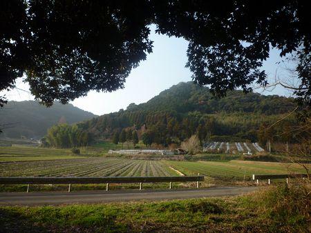 大己貴神社(1)(旧三輪町)_c0222861_15113164.jpg