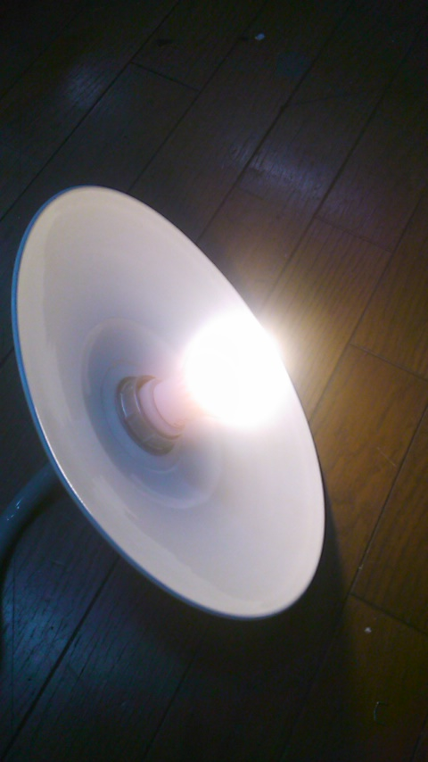 LED_b0152079_1815843.jpg