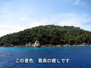 旅仲間とシミランダイビング☆_f0144385_22493670.jpg
