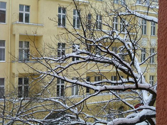 (続)雪。雪。雪_c0180686_22114197.jpg