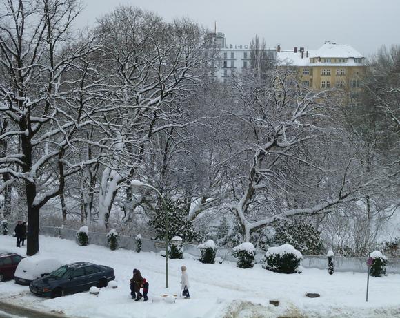 (続)雪。雪。雪_c0180686_22132338.jpg