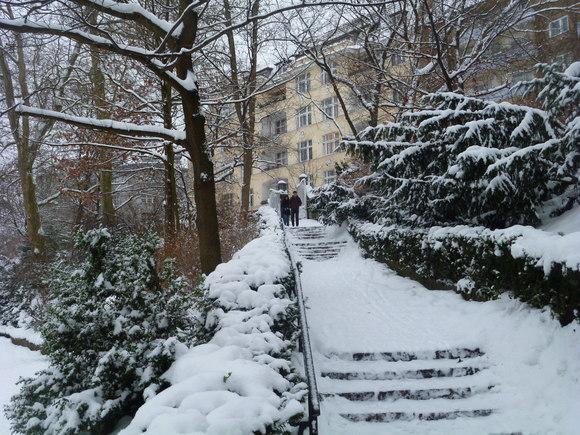 (続)雪。雪。雪_c0180686_22143961.jpg