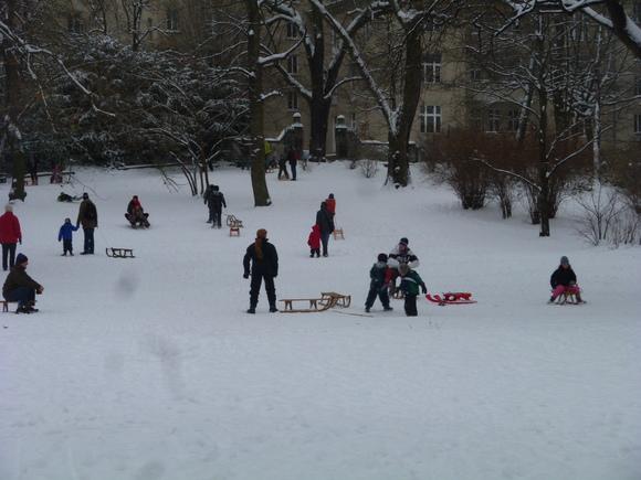 (続)雪。雪。雪_c0180686_22155963.jpg