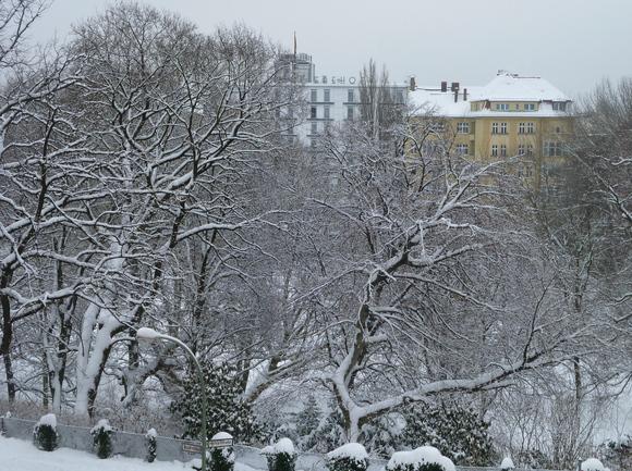 (続)雪。雪。雪_c0180686_22254663.jpg