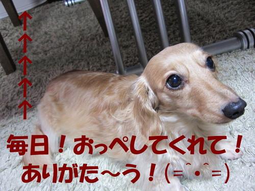 b0200291_1832391.jpg