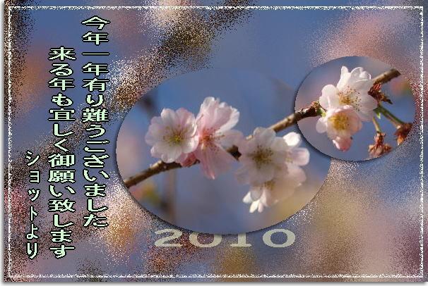 f0164592_7322236.jpg
