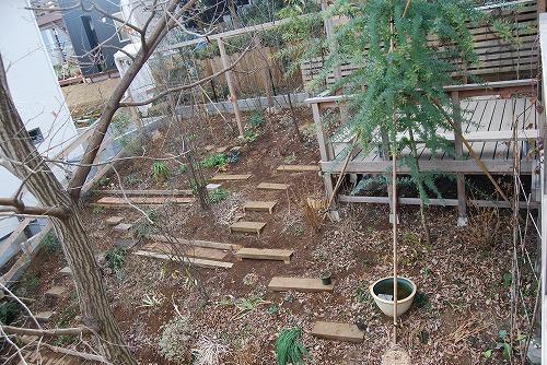 2010年の庭…_c0124100_22453564.jpg