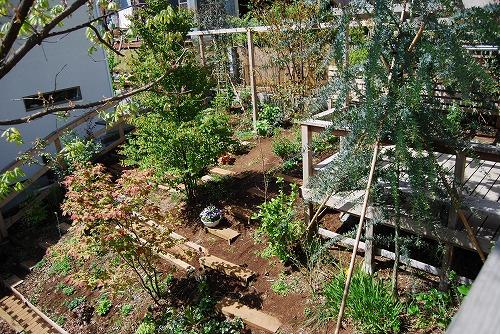 2010年の庭…_c0124100_22551636.jpg