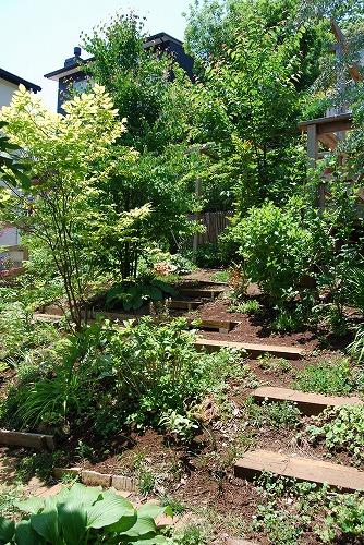 2010年の庭…_c0124100_22585085.jpg