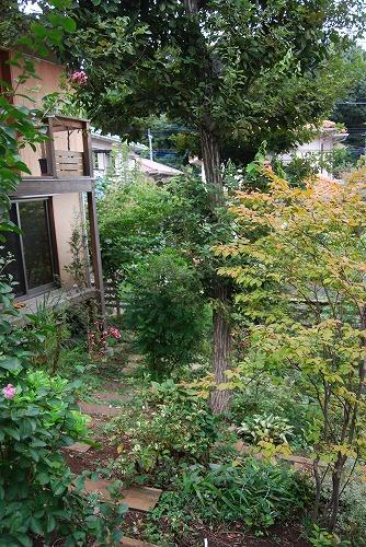2010年の庭…_c0124100_2384936.jpg